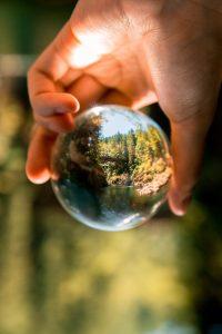 ¿Cuáles son las consecuencias de cuidar inapropiadamente el ecosistema?